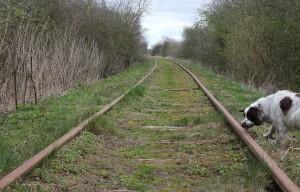 assensbanen01 s