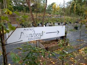 I dagens anledning var der også åbent i Madam Bundsens Haver.