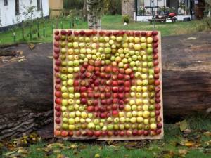En æblemosaik skal der være til en æblefestival.