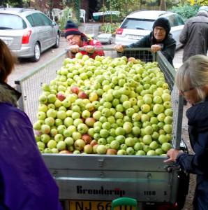 Filippa, Ingrid Marie, Cox Orange og mange andre æbler blev presset i Assens.