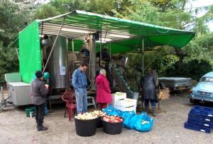 Der var kø hele lørdag eftermiddag for at få presset æbler.